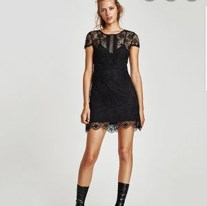 ZARA mini black lace dress